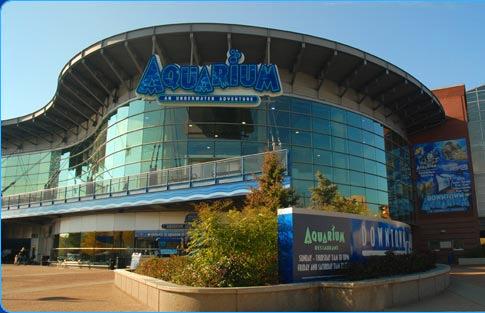 Denver Downtown Aquarium
