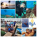 HSA Hawaii Holiday 2015