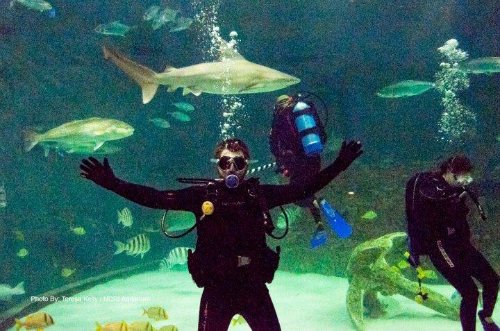 North Carolina Aquarium On Roanoke Island Manteo Nc